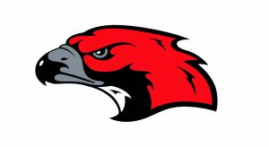 North Tama Schools Logo: Redhawk head with gray beak and black outline